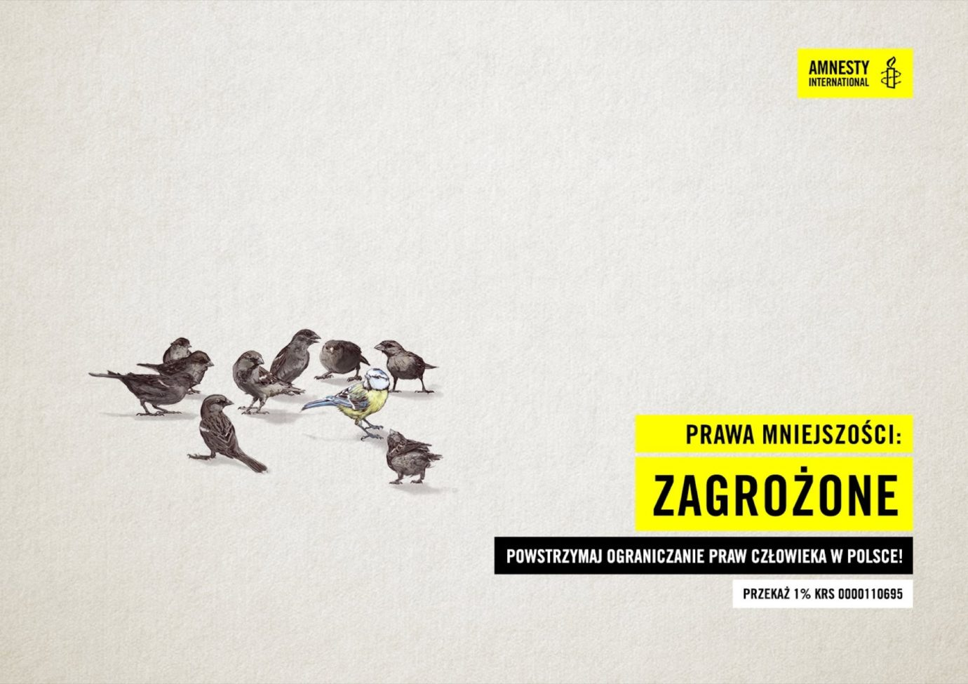 Klient: Amnesty International Polska / Agencja: TWIN. digital collective